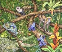La Selva Fine-Art Print