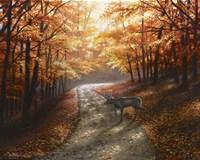 Autumn Bliss Fine-Art Print
