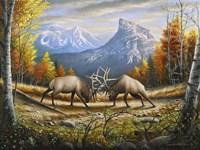 The Wild Frontier Fine-Art Print