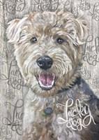 Lucky Dog Welsh Terrier Fine-Art Print