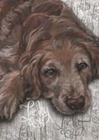 Lucky Dog Dark Golden Fine-Art Print