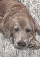 Lucky Dog Golden Fine-Art Print