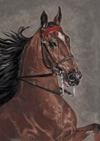 Bay Horse Fine-Art Print