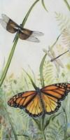 Botanical Beauties Fine-Art Print
