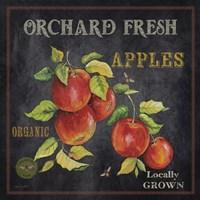 Orchard Fresh Apples Fine-Art Print