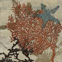 Coastal 4 Fine-Art Print