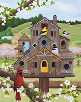 Bird Condo Fine-Art Print
