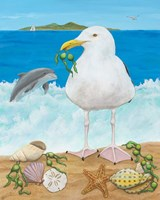 Gull Envy Fine-Art Print
