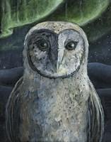 Barn Owl II Fine-Art Print