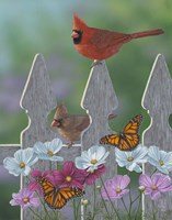 Royalty Cardinals Monarchs Fine-Art Print