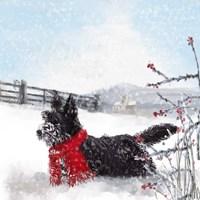 Black Scottie Dog Fine-Art Print
