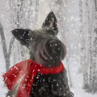Scotty Dog Red Scarf Fine-Art Print