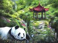 Shen Fine-Art Print