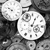 Pieces of Old Watch BW Fine-Art Print