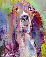 Art Basset Hound Fine-Art Print