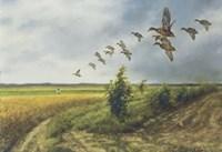 Migration Fine-Art Print