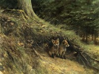 Fox Cubs Fine-Art Print