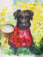 Zverg Schnauzer Dog Fine-Art Print