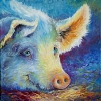 Baby Blues Piggy Fine-Art Print