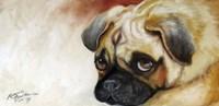 Cutie Pie Pug Fine-Art Print