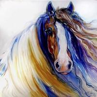 Gypsy Vanner Rouge Fine-Art Print