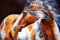 Mohican Indian War Horse Fine-Art Print