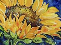 Sunflower September Fine-Art Print
