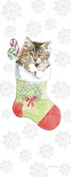 Christmas Kitties IV Snowflakes Fine-Art Print