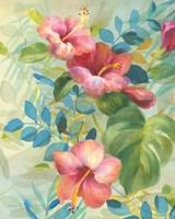 Hibiscus Garden II Fine-Art Print
