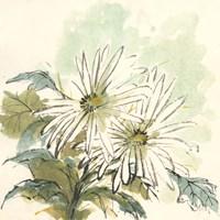 Snowmum III Fine-Art Print