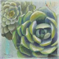 Succulents II Crop Fine-Art Print