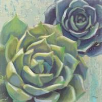 Succulents I Crop Fine-Art Print