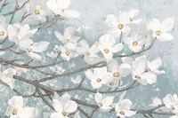 Dogwood Blossoms II Blue Gray Crop Fine-Art Print