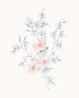 Flowers on White II Contemporary Fine-Art Print