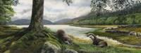 Otters Fine-Art Print