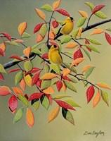 Backyard Goldfinches Fine-Art Print