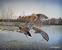 Landing Zone Fine-Art Print