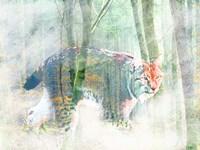 Silent Hunter Fine-Art Print