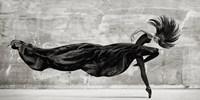 Black Swan Fine-Art Print