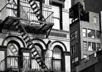 TriBeCa Beauty, NYC Fine-Art Print