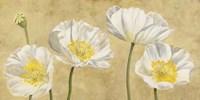 Poppies on Gold Fine-Art Print
