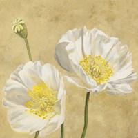 Poppies on Gold I Fine-Art Print