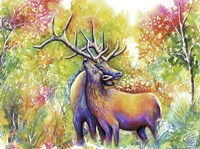 Elk Love Fine-Art Print