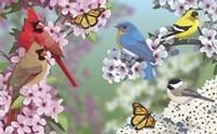 Birds In Spring Blossom Fine-Art Print