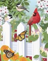 Garden Birds On Fence Fine-Art Print
