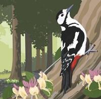 Woodpecker On Tree Fine-Art Print