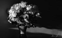 Flowers In Light Fine-Art Print