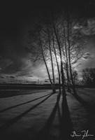 Into Darkness Fine-Art Print