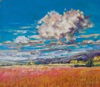 Summer Clouds over Cornfield Fine-Art Print