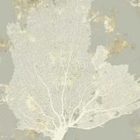 Sea Coral I Fine-Art Print